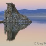 Sunset Reflection at Mono Lake