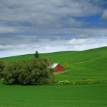 The Palouse: Grassland Country