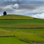 The Palouse: Simplify the Design