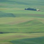The Palouse: Kamiak Butte