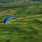 Palouse: Something's in the Air