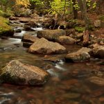 Jordan Creek, Acadia National Park, Maine