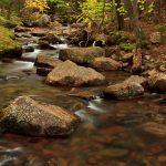 Jordan Creek, Acadia National Park