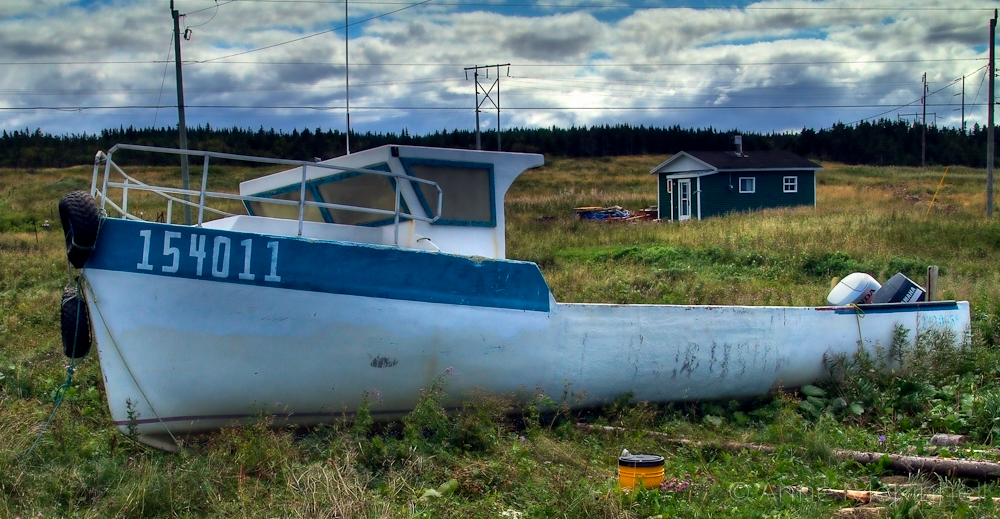 A Boat for Dad - Newfoundland - Anne McKinnell Photography