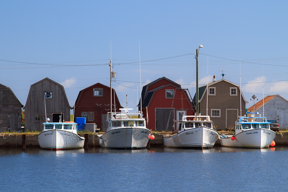 Boats in Malpeque Bay