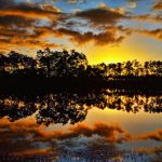 First Sunrise in Everglades National Park
