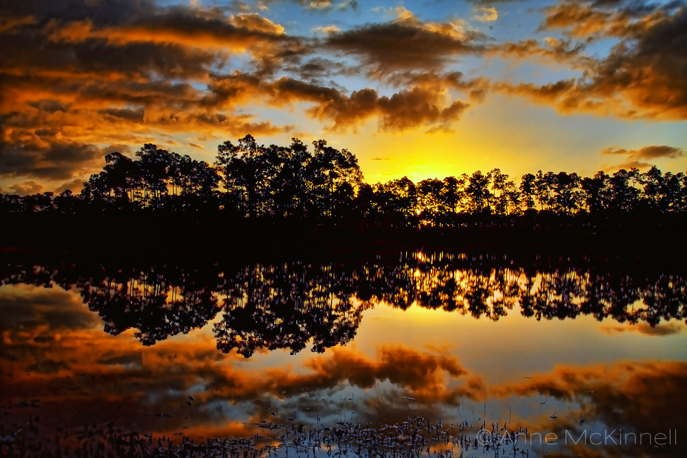 First Sunrise in Everglades National Park - Anne McKinnell Photography