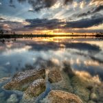 Conveying Emotion in a Landscape Image