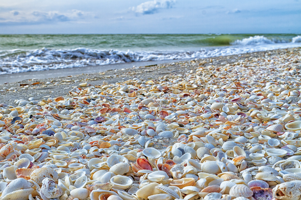 Beach on Sanibel Island, Florida