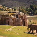 Elephant Valley at the San Diego Safari Park