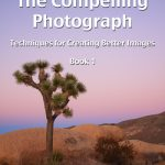 My Brand New Photography eBook / eCourse