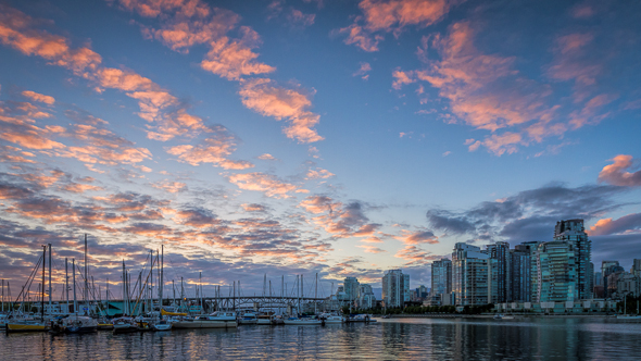 False Creek, Vancouver, British Columbia by Anne McKinnell