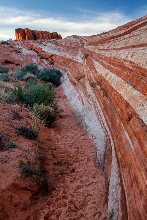 Duck Rock and Fire Wave, Valley of Fire, Nevada, by Anne McKinnell