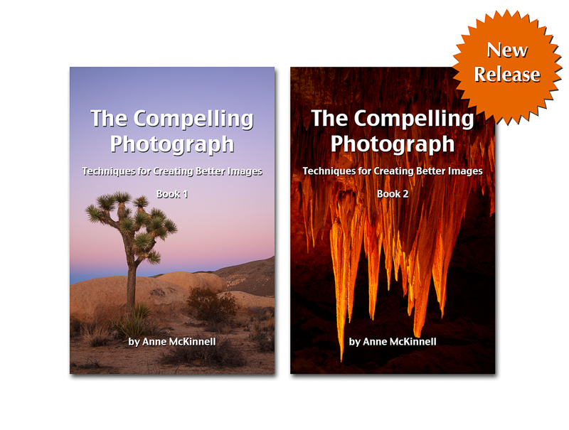 compelling photograph bundle new release