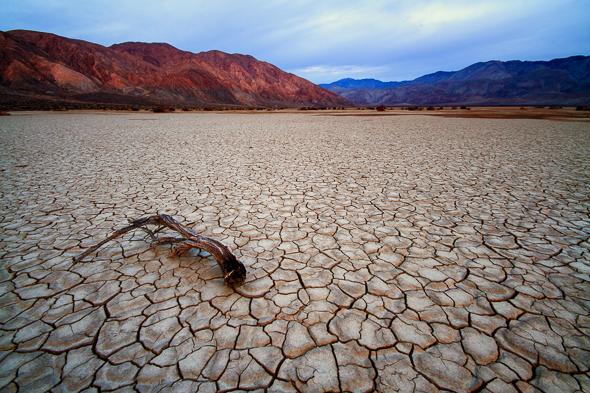 Clark Dry Lake, Borrego Springs, California, by Anne McKinnell
