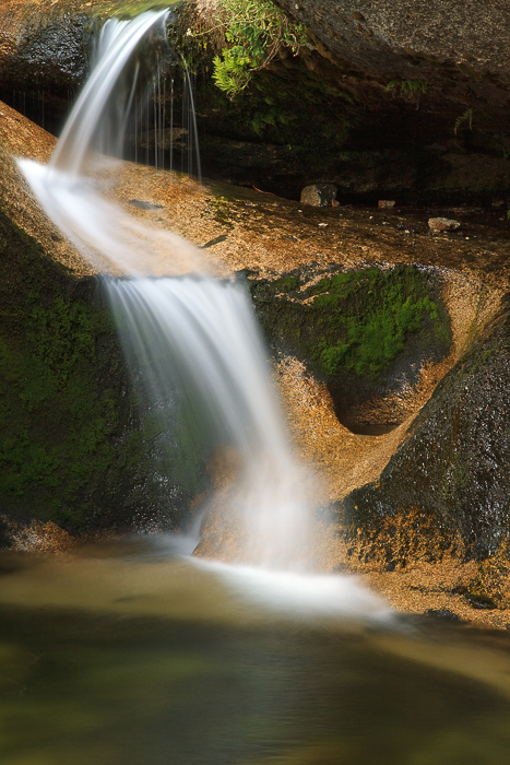 Waterfall at Stony Creek, California, by Anne McKinnell