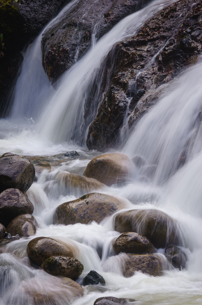 Englishman River Falls, Vancouver Island, British Columbia by Anne McKinnell