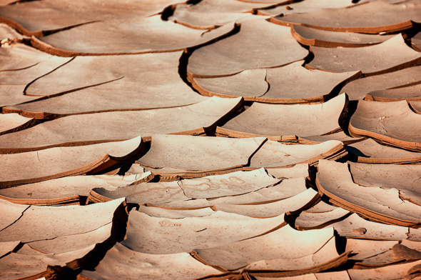 Dried Mud at Clark Dry Lake, Anza Borrego State Park, California by Anne McKinnell