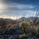 Somewhere near Yaqui Well Nature Trail
