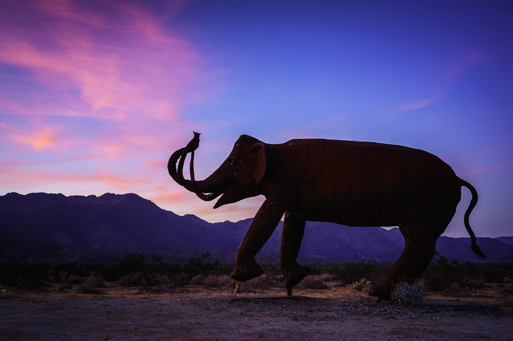 Elephant sculpture at sunset in Borrego Springs, California, by Anne McKinnell