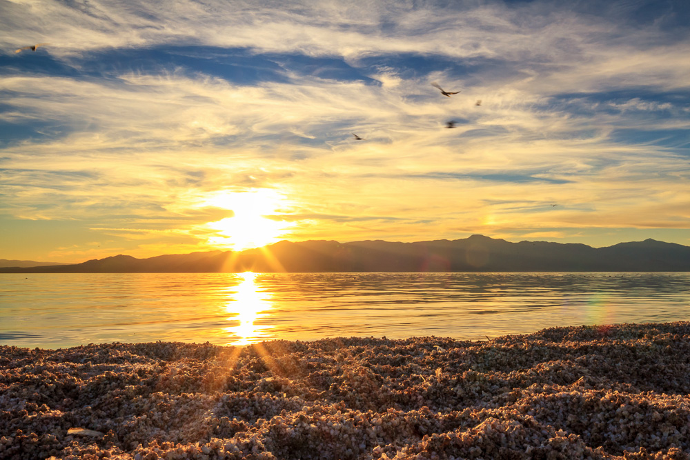 Sunset on the Salton Sea, California, by Anne McKinnell