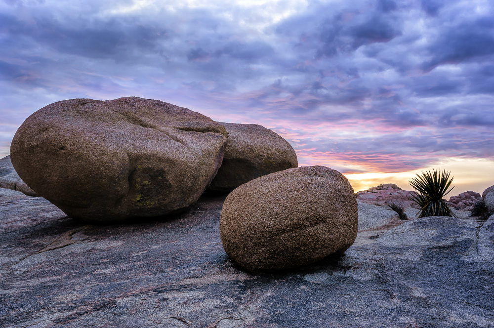 Jumbo Rocks by Anne McKinnell