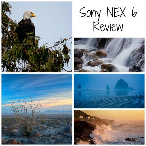 Sony NEX 6 digital camera review