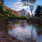 The Watchman and Virgin River in Zion National Park, Utah by Anne McKinnell