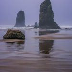 Foggy day at Cannon Beach, Oregon by Anne McKinnell