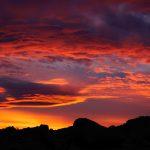 Desert Sunset at Joshua Tree National Park