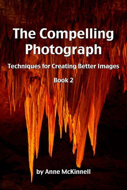 Compelling Photograph Book 2