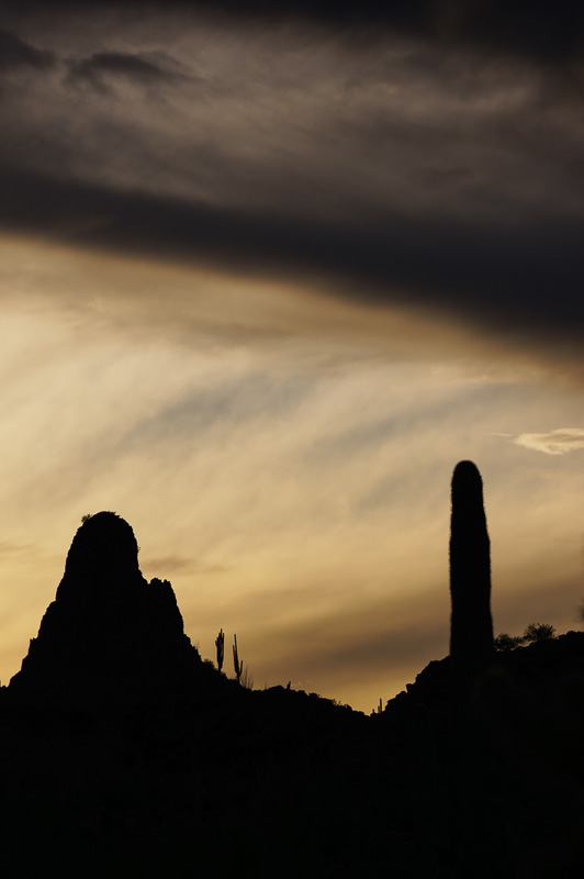 Ajo Sunset #1 by Anne McKinnell