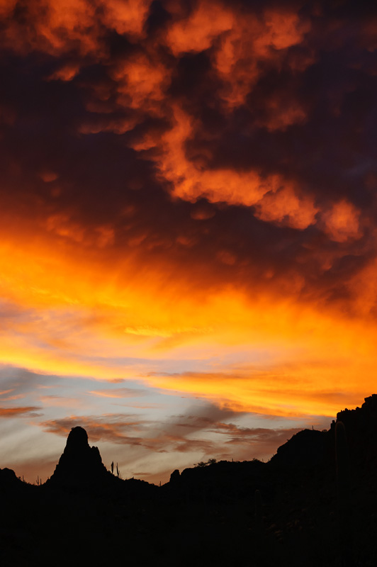 Ajo Sunset #3 by Anne McKinnell