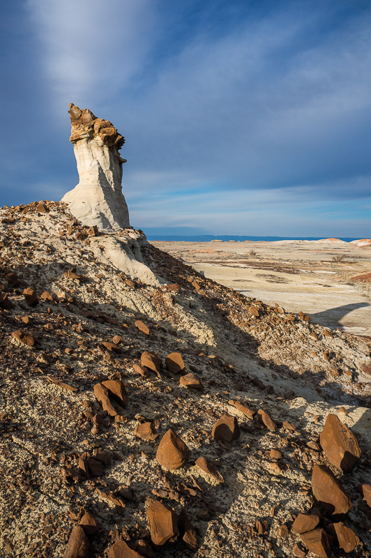 Bisti Badlands by Anne McKinnell