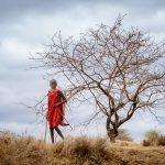 Drive By Maasai Boy