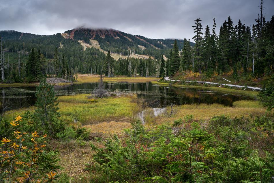 Mount Washington by Anne McKinnell