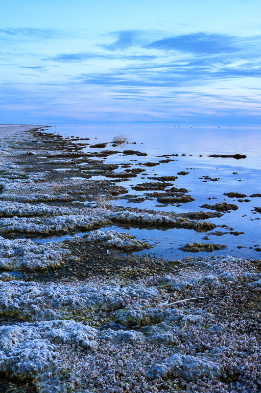 Salton Sea Sunset by Anne McKinnell