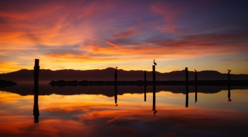 Salton Sea Moments by Anne McKinnell