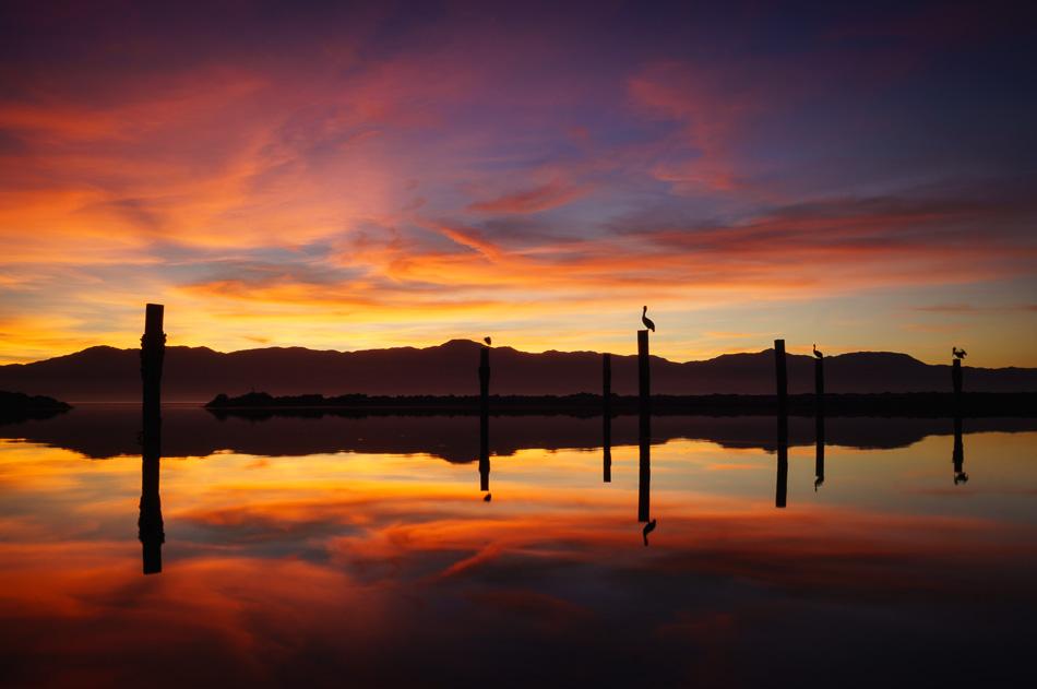 Salton Sea Moments by Anne McKinnell