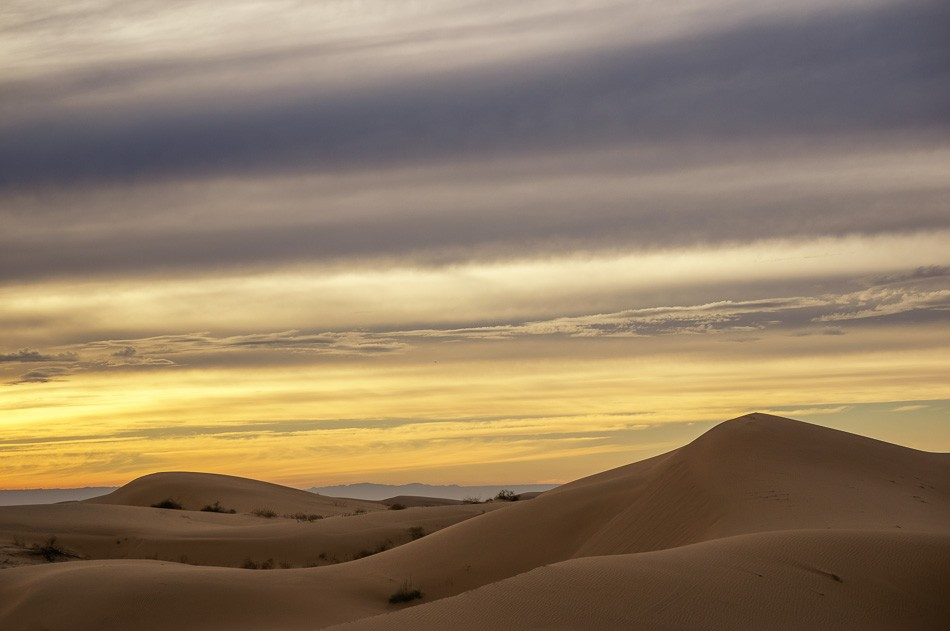 North Algodones Sand Dunes, California