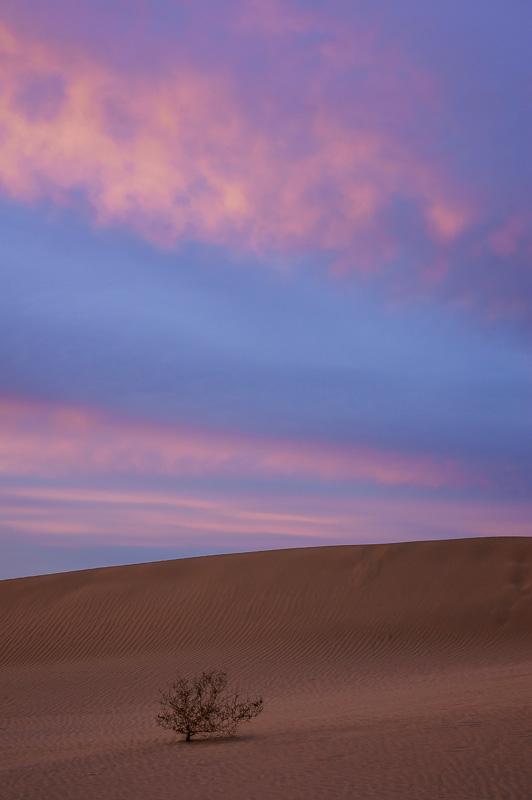 North Algodones Sand Dunes, California