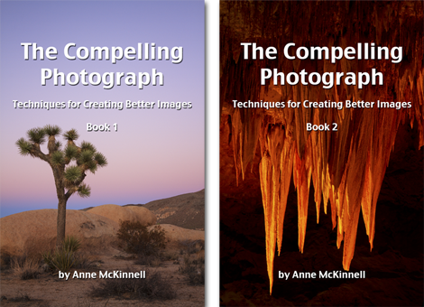 Black friday deals for photographers 2017 anne mckinnell photography compelling photograph fandeluxe Images