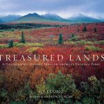 Book Review: Treasured Lands by QT (Tuan) Luong