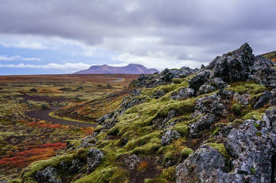 Berserker Lava Field, Iceland