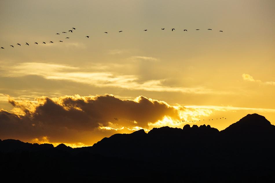Sunset at Cibola National Wildlife Refuge, Arizona
