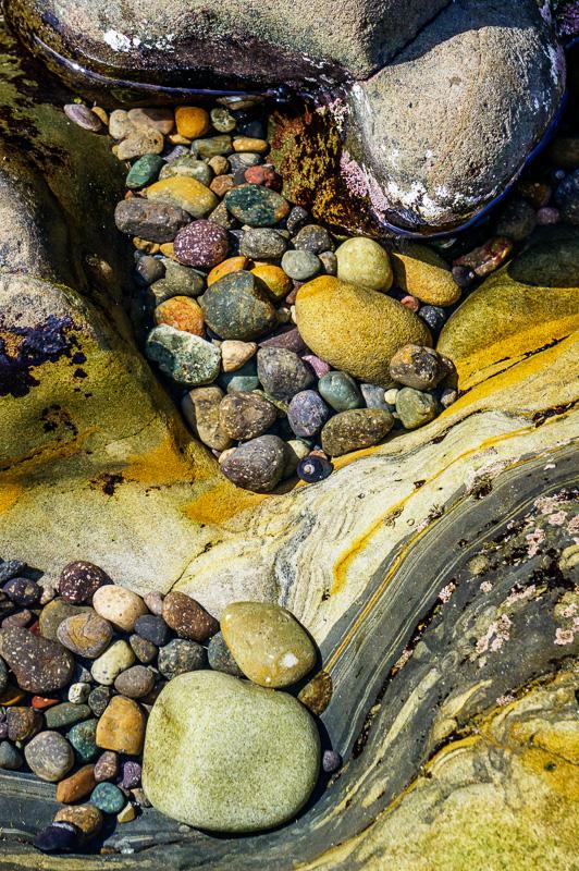 Weston Beach, California by Anne McKinnell