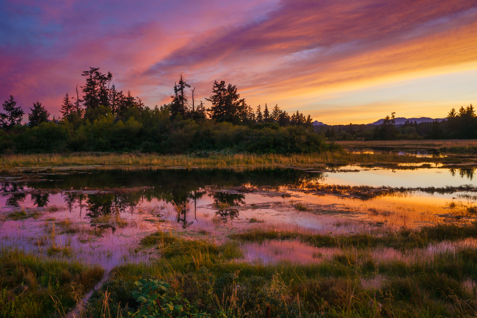 Sunset at the estuary in Campbell River, British Columbia