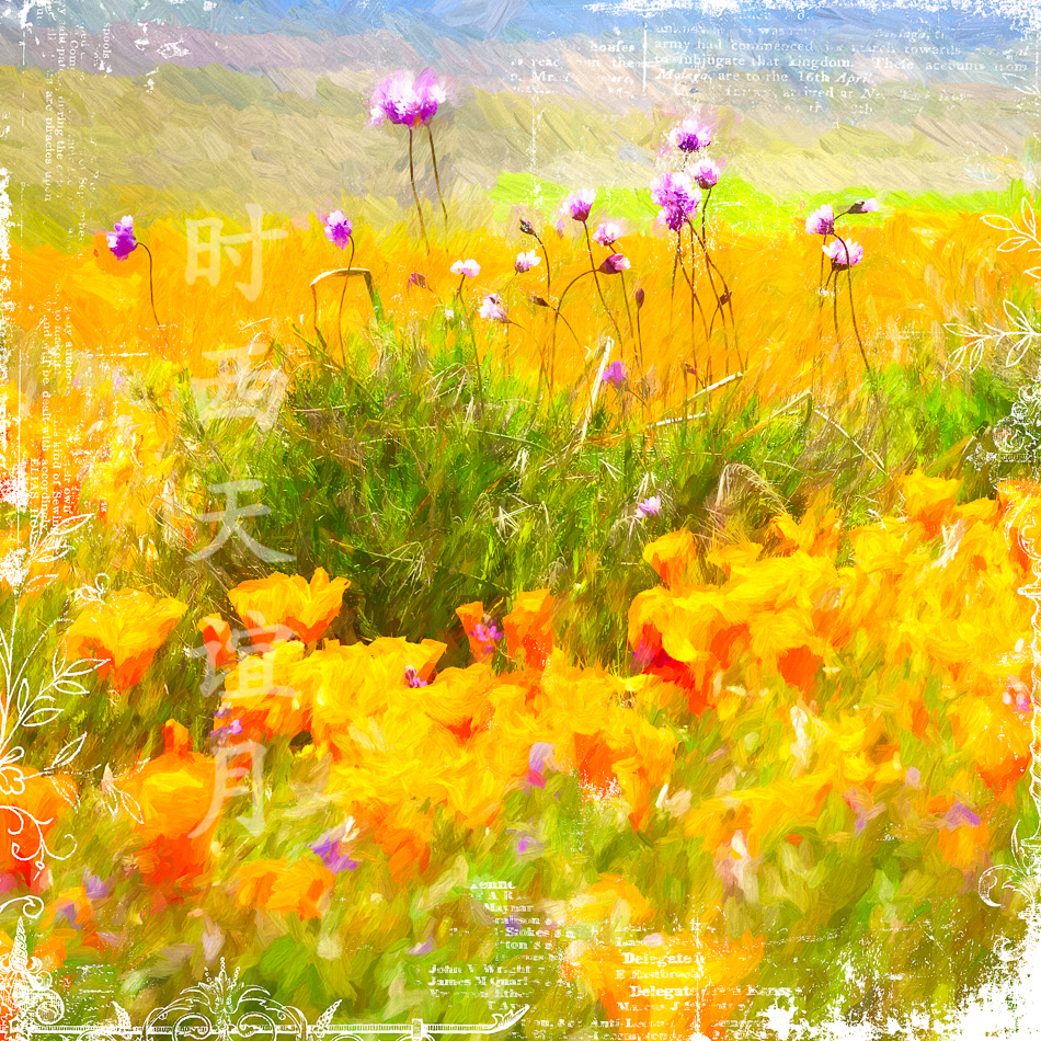Super-bloom at the Antelope Valley California Poppy Reserve near Lancaster, California