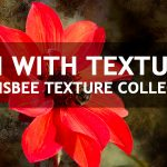 Enhance Your Photos with Textures
