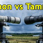Canon 400mm f/5.6L vs. Tamron 150-600mm G2 Lenses for Wildlife Photography